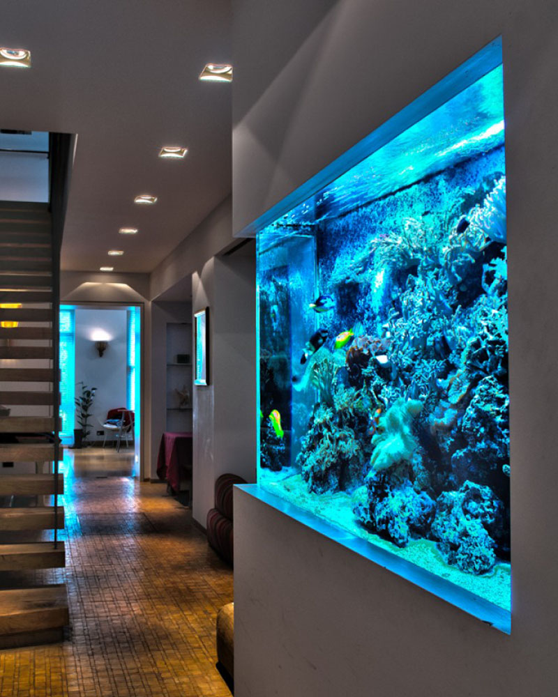 Home Aquarium Design Ideas: Aquarium Architect- Custom Fish Tanks Sydney